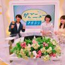 KTS 鹿児島テレビ 毎週金曜日15時50分スタート かごニューマルシェ!
